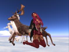 oh-deer3_001