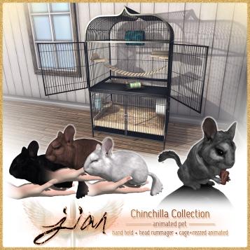 Jian Chinchillas_Luxe Box
